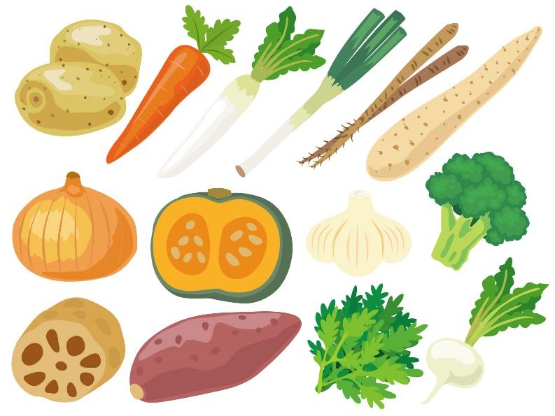 免疫力アップに効果的な食材と栄養