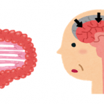 高齢者と腸内細菌 疾病・認知症編
