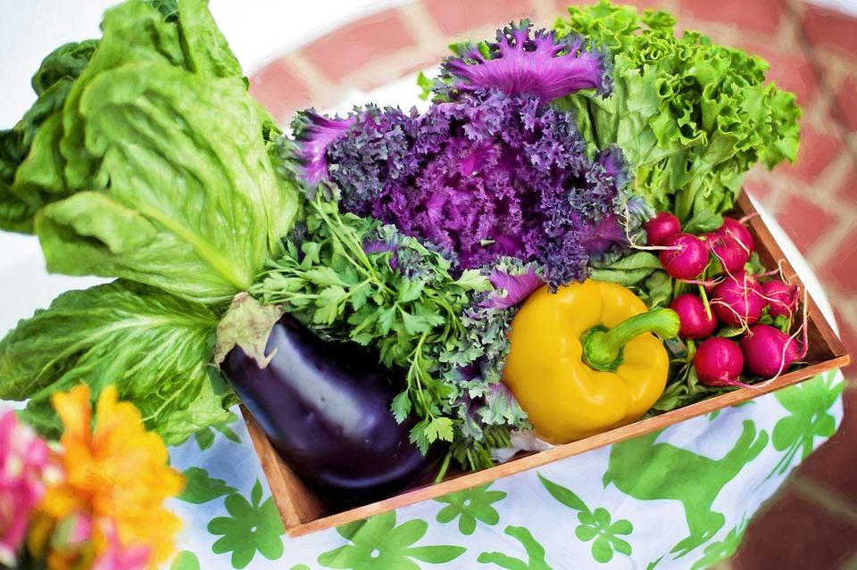 健康な生活に大切な食事バランス