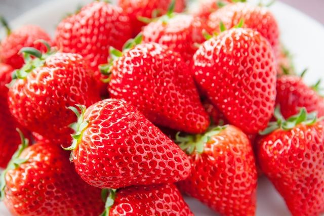 イチゴはビタミンCの宝庫!健康効果とは?