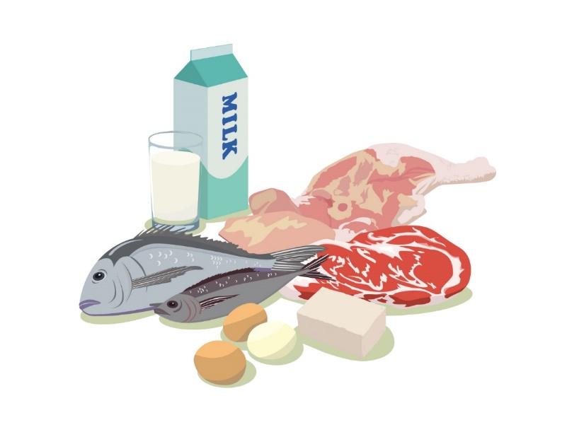 シニア世代に必要なたんぱく質量とその食材について