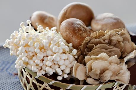 秋の味覚きのこの栄養|免疫力アップや生活習慣病予防に!