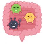 免疫力を上げるなら腸内環境の改善から!?腸と免疫の関係性
