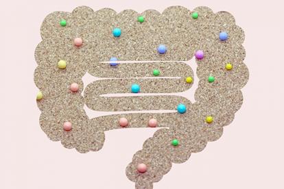ダイエットと腸内環境の関係