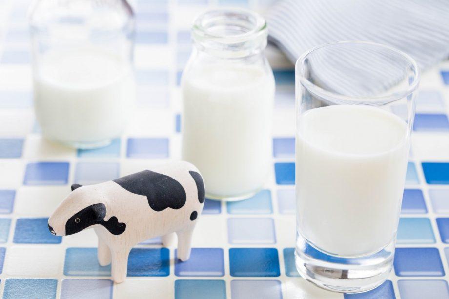 日本人に不足しがちなカルシウムが豊富!乳製品の栄養とは?